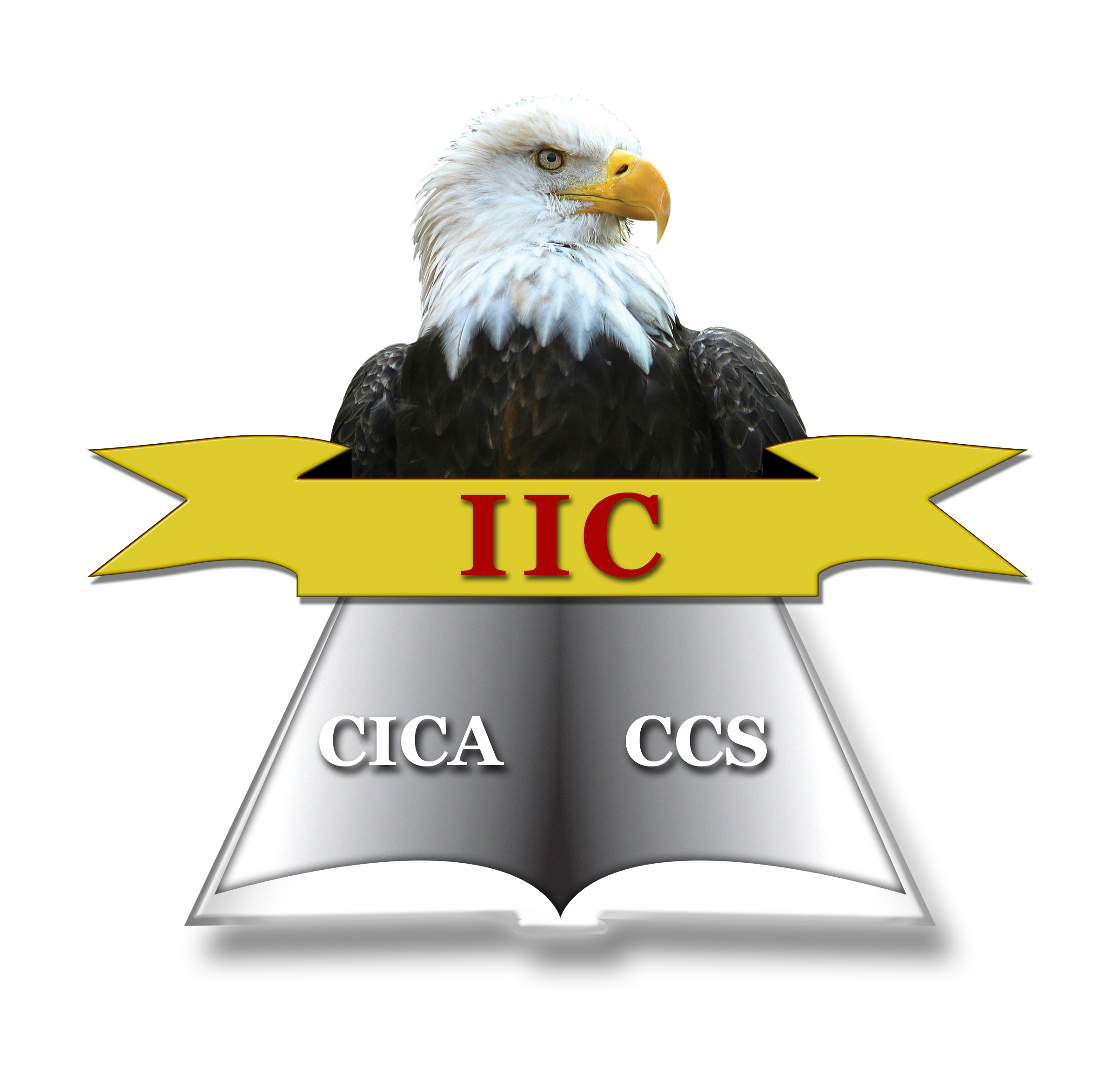 Institute For Internal Controls About Theiic